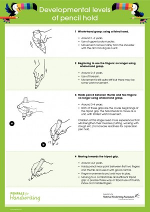thumbnail of Pencil Grip
