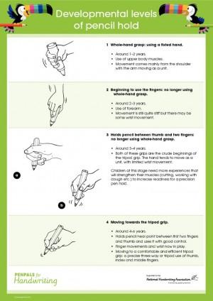 thumbnail of Pencil Grip